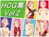 HCG集 Vol.2